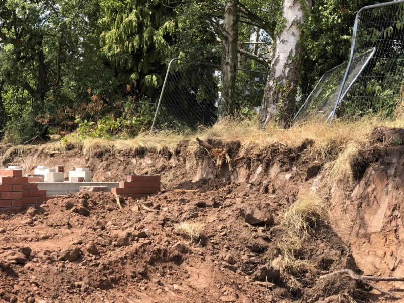 trees on development sites: removal of major roots